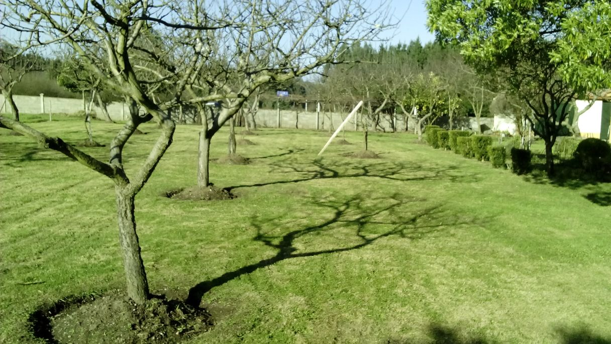 Mantenimiento de jardines y parques sytgal for Mantenimiento de parques y jardines